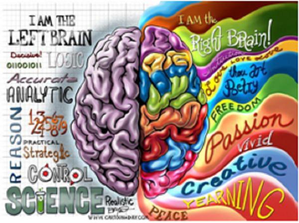 brain_gm