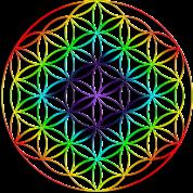 rainbow-chakra-flower-of-life