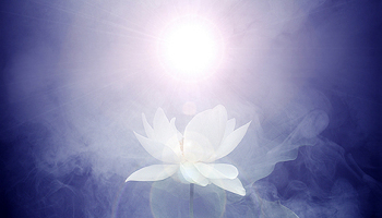 Luce di Amore Saggezza