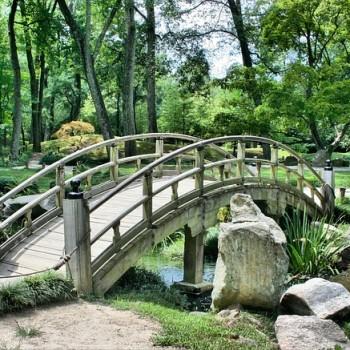 Oriente e meditazione, ponte zen